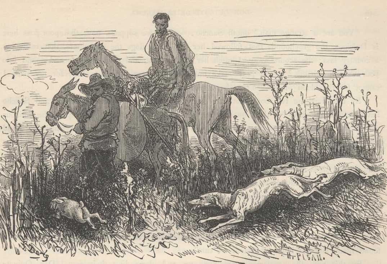 Don Quixote By Miguel De Cervantes Chapter Lxxiii
